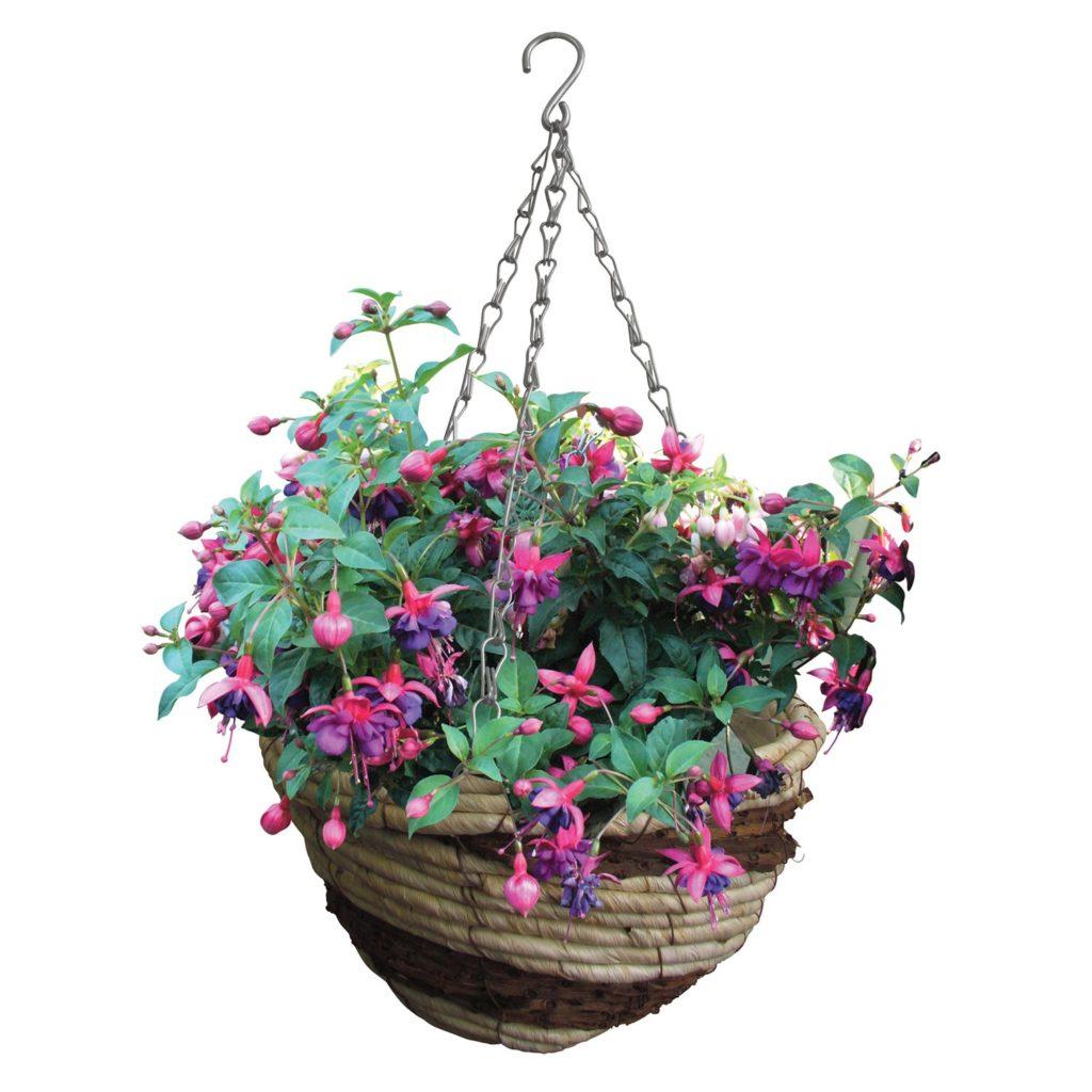 Как посадить цветы в уличное кашпо?
