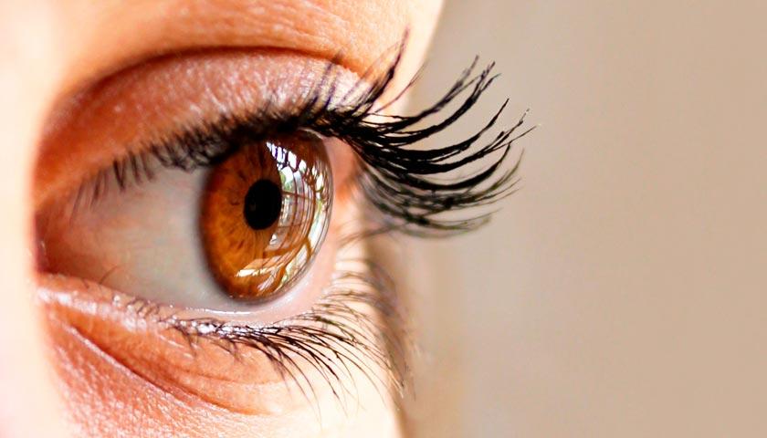 7 продуктов, полезных для глаз