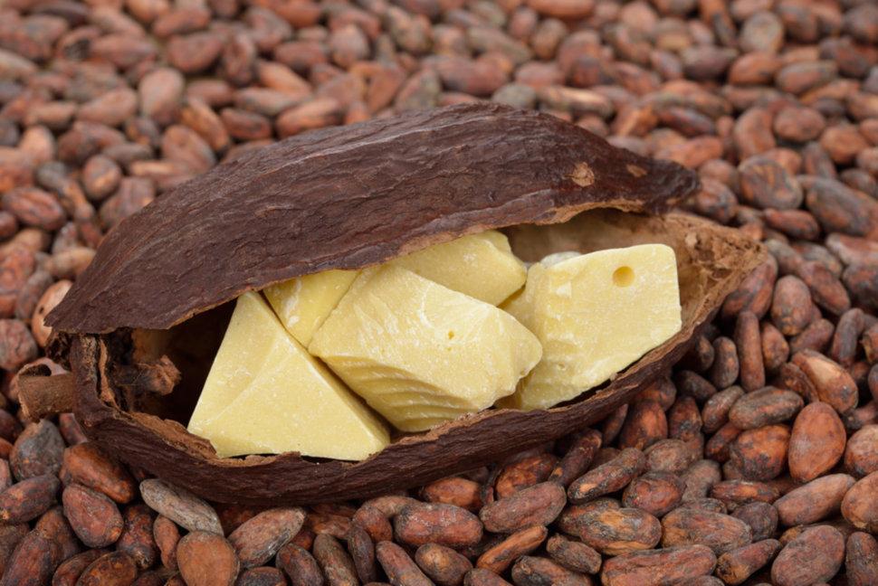 Масло какао и его польза для нашей красоты