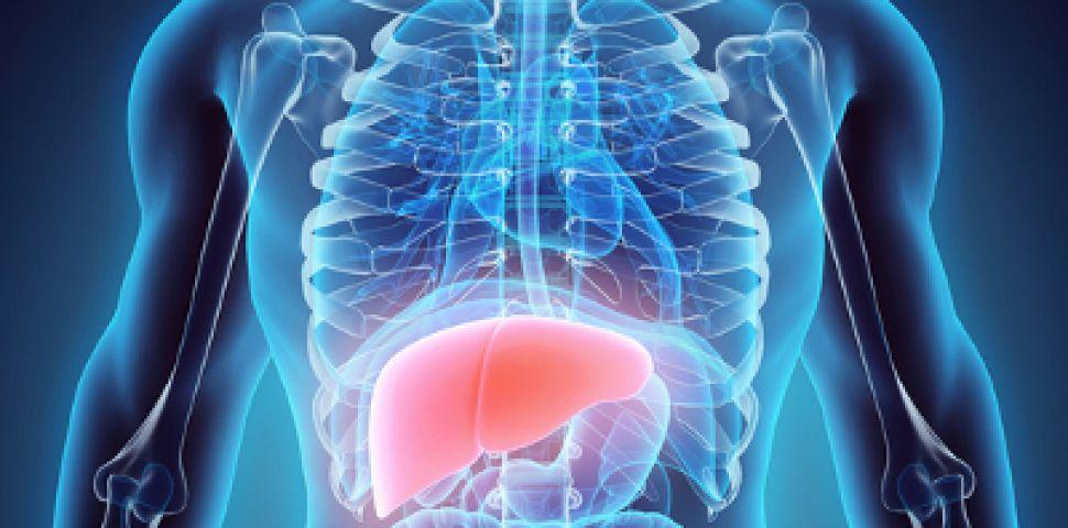 Острый вирусный гепатит — симптомы и пути заражения