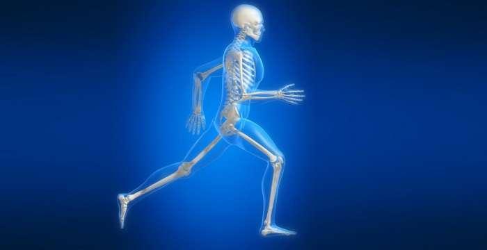 Укреплять суставы и хрящи еще никогда не было так легко