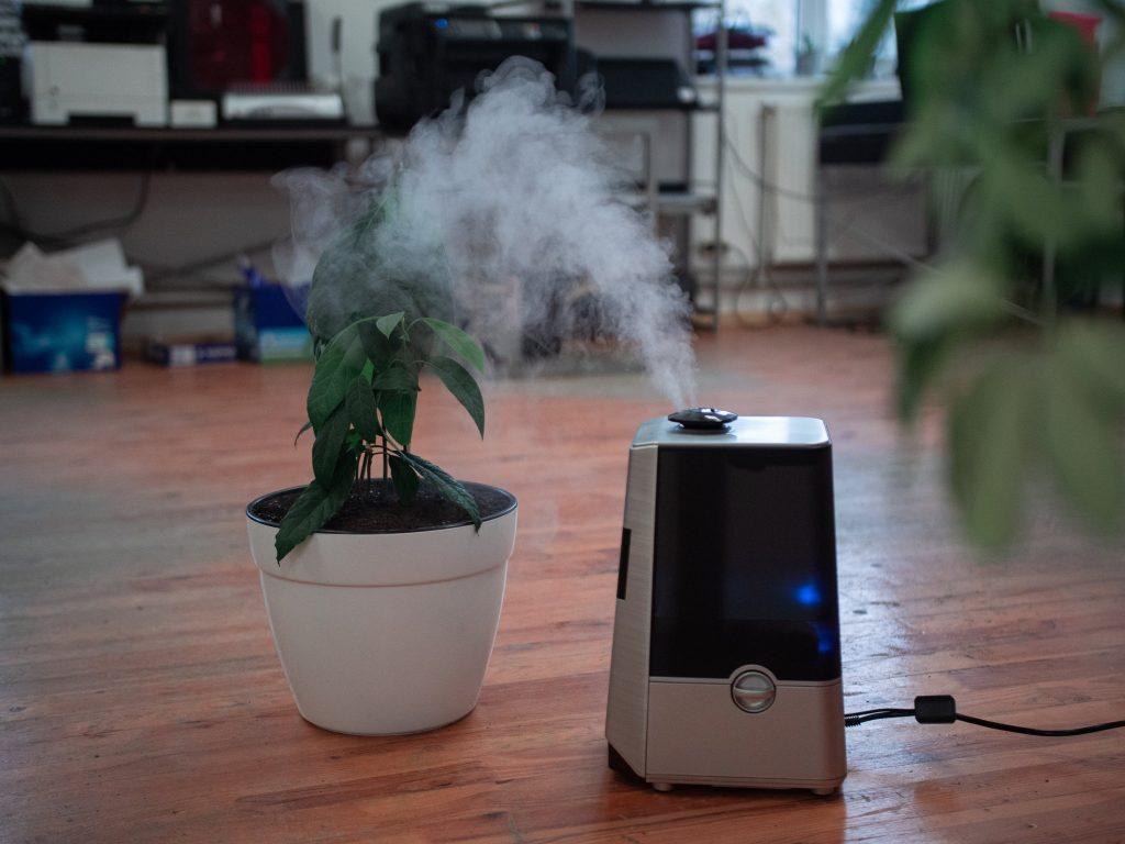 Очиститель воздуха: нуждается ли ваш дом в нём?