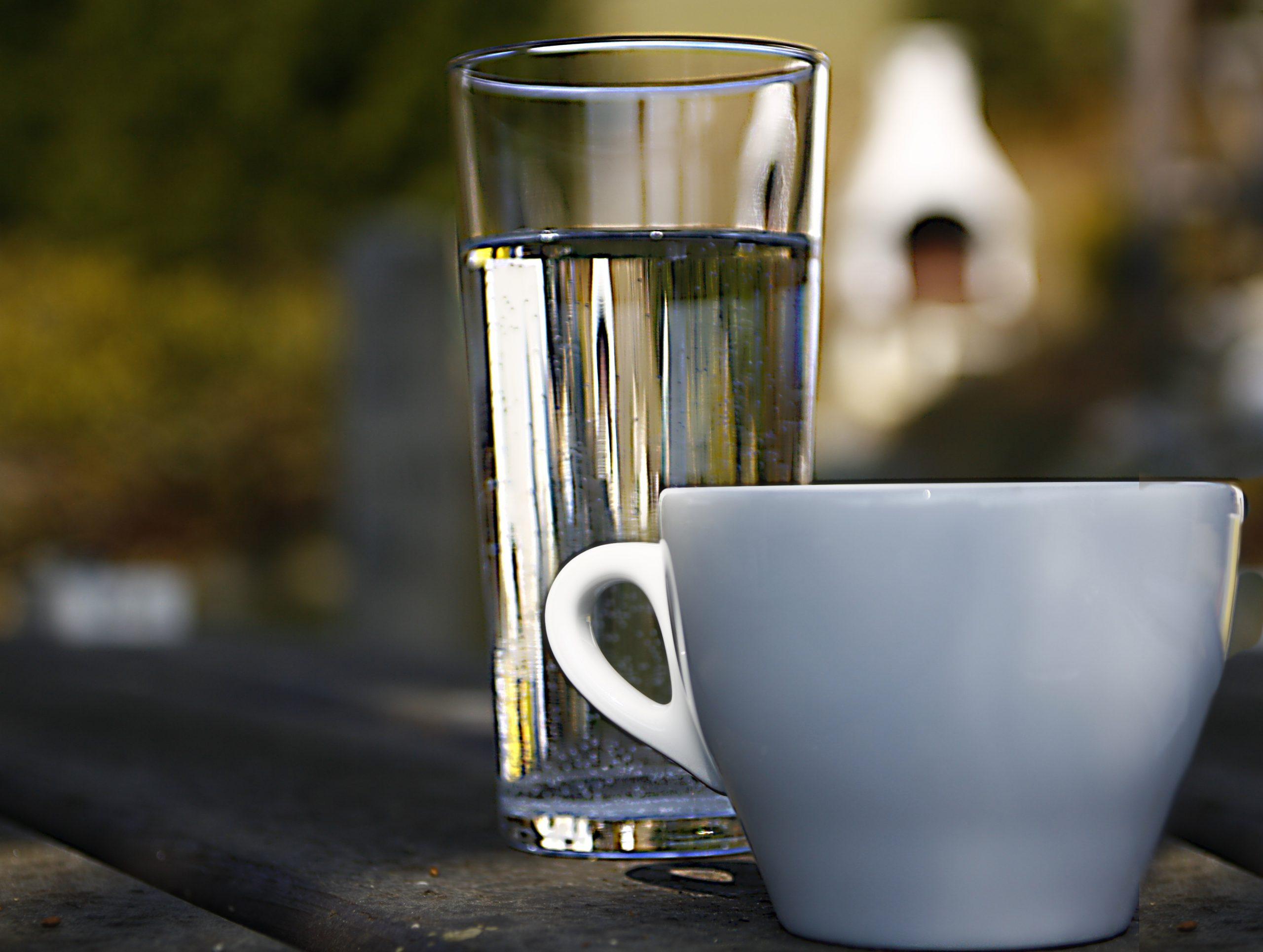 Почему первым делом утром нужно пить воду?