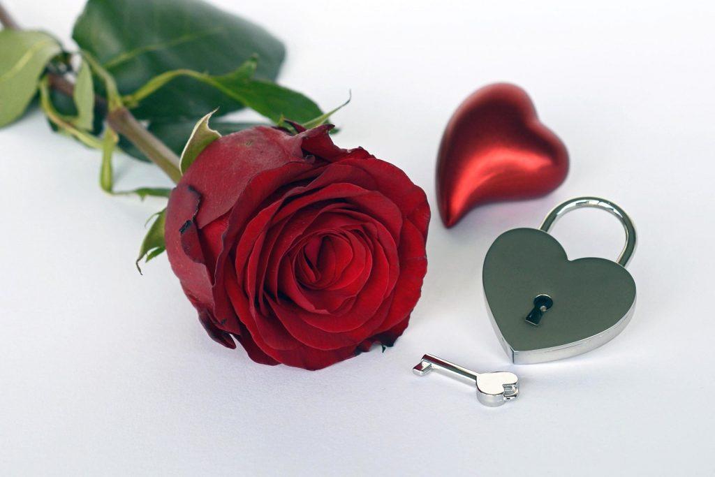 Что букет цветов в День Святого Валентина расскажет о ваших отношениях?