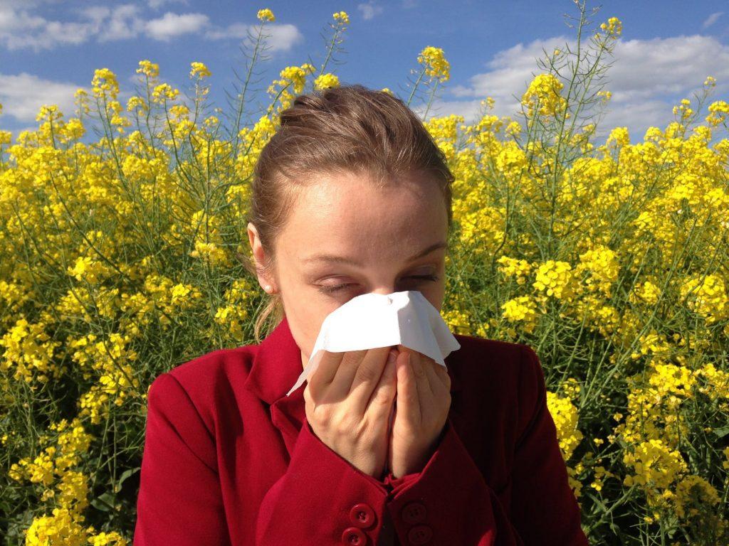 Когда начинается сезон аллергии и когда пить лекарства?