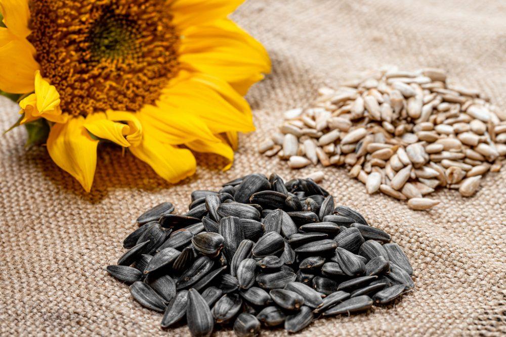 6 преимуществ семечек для здоровья и почему их называют суперпродуктом