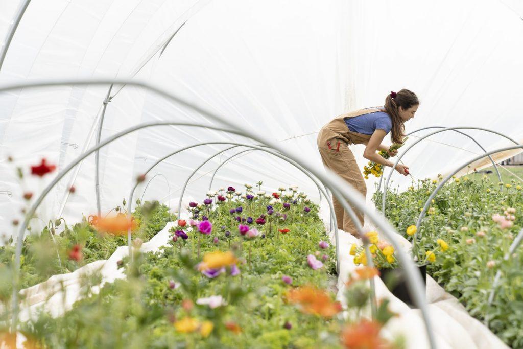 Как не навредить спине во время работы в саду: полезные советы и упражнения