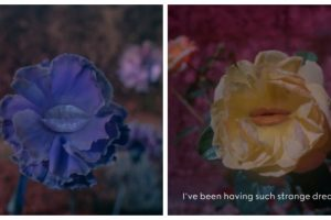 Цветы читают стихи: кампейн бьюти-линии от GUCCI