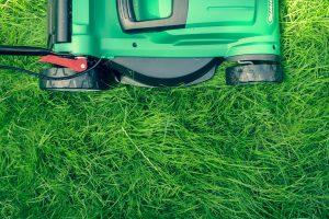 5 ошибок, которые вы можете совершать, когда стрижете газон