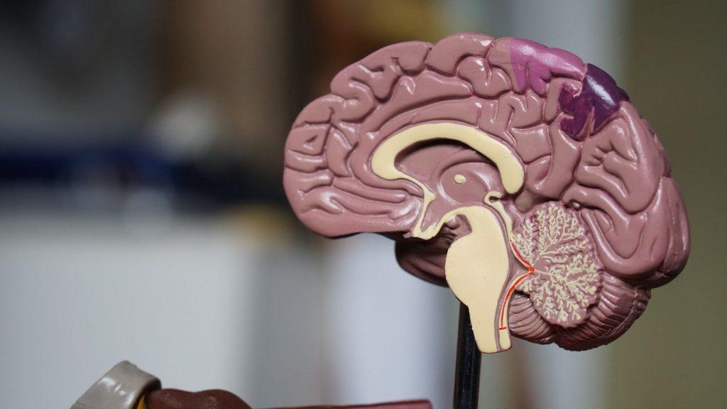 Вещь, которая выявит болезнь Альцгеймера за 20 лет до появления симптомов