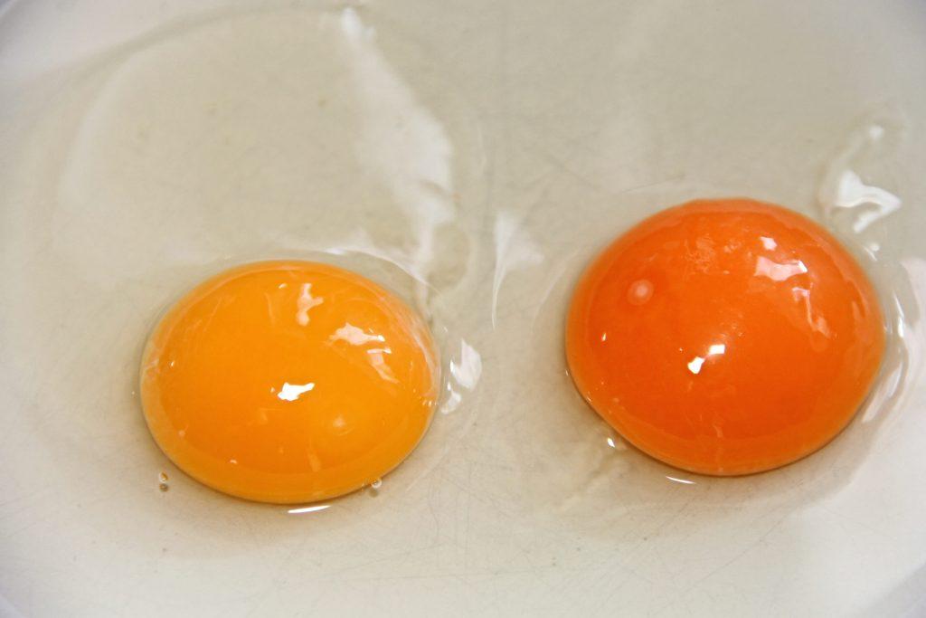 Что цвет яичного желтка говорит о его питательности и пользе для вас