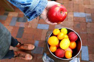 Какие продукты нужно есть, чтобы справиться с тошнотой