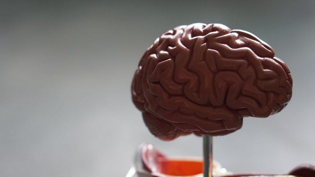 Если вы хорошо делаете следующую вещь, ваш риск болезни Альцгеймера ниже