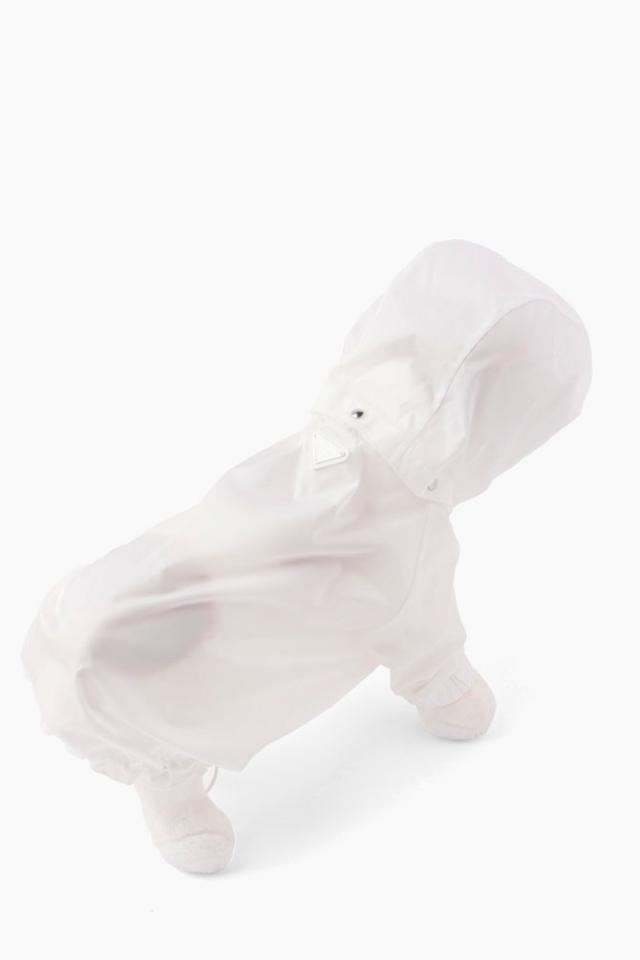 Для совместных образов: Prada создали коллекцию для домашних питомцев