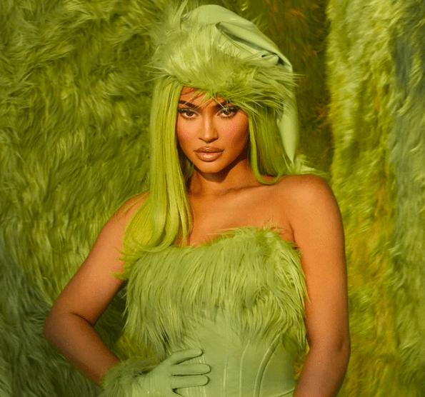 Гринч и зеленые оттенки: Кайли Дженнер показывает праздничную коллекцию косметики