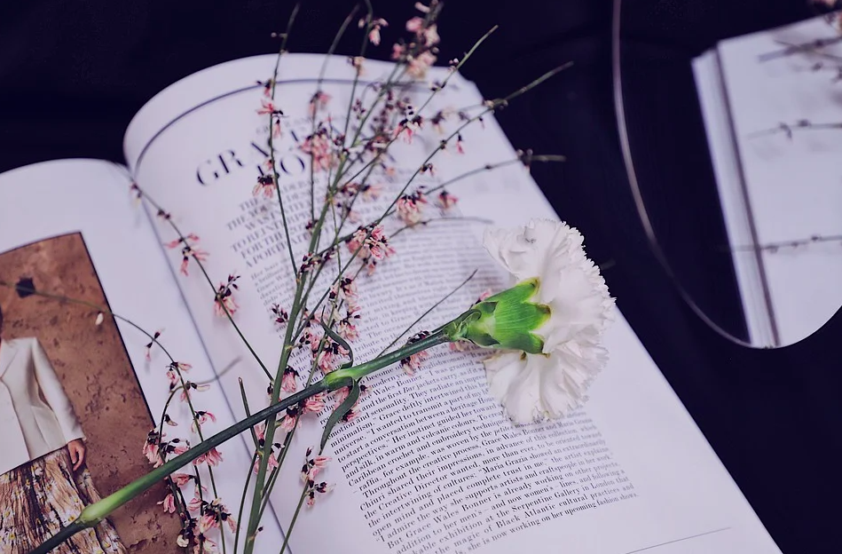 4 художественные книги, которые помогут вам выучить английский язык