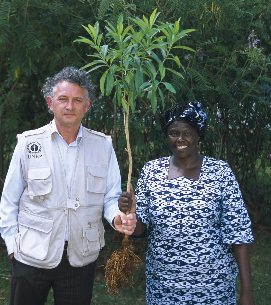 Помощь человечеству: Yves Rocher высадили более 100 миллионов деревьев по всему миру
