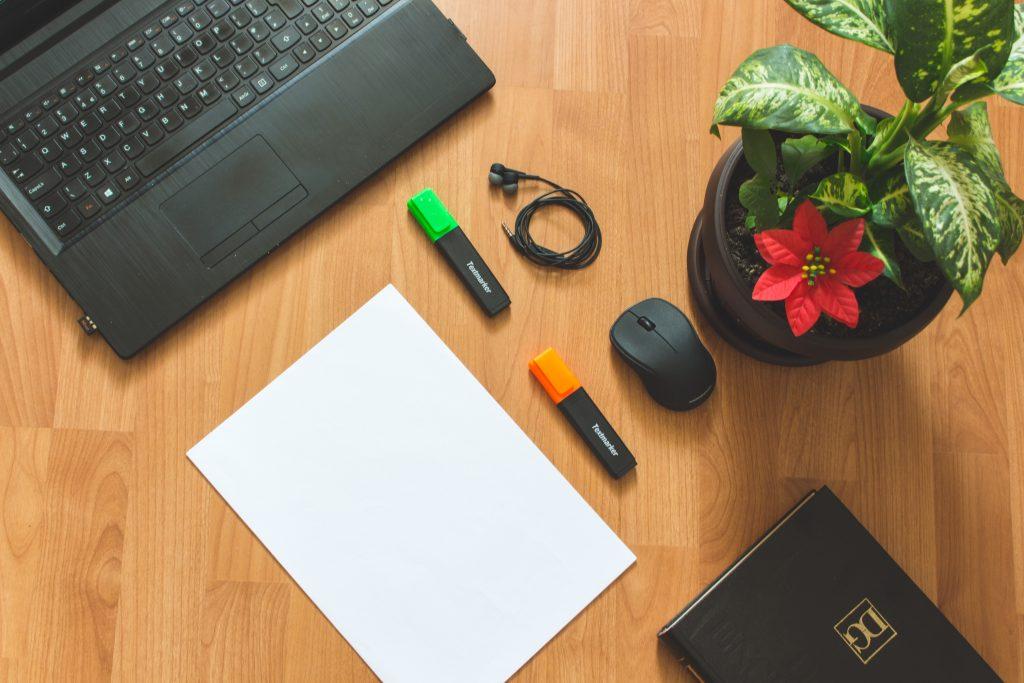 Почему у каждого должно быть растение на рабочем столе