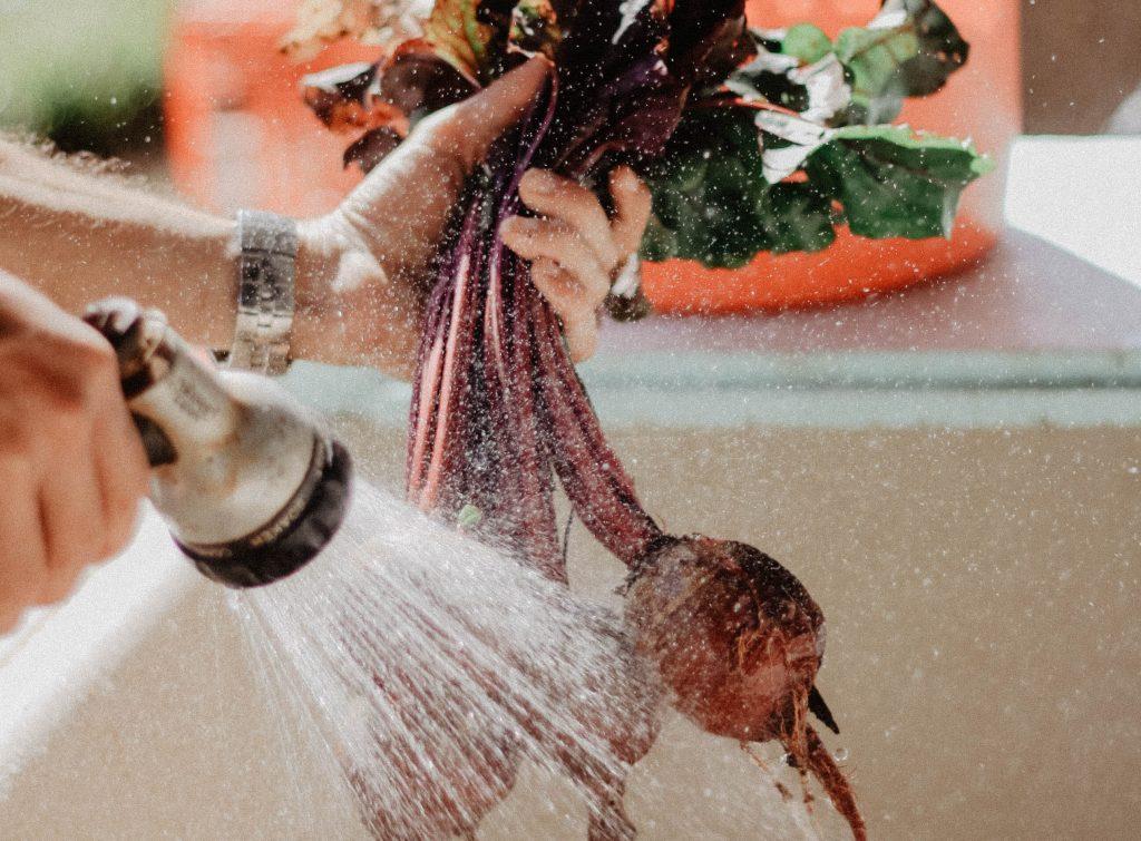 Как правильно мыть фрукты и овощи, чтобы уничтожить на них все микробы