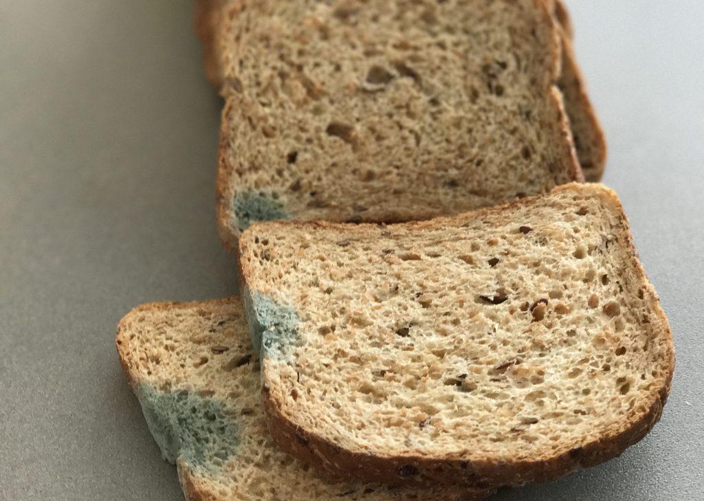 Что на самом деле случится, если вы случайно съедите хлеб с плесенью