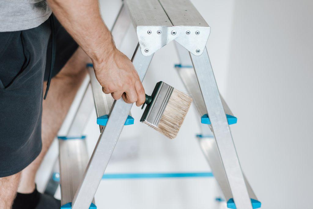 Как избавиться от плесени на стене и можно ли её просто закрасить?