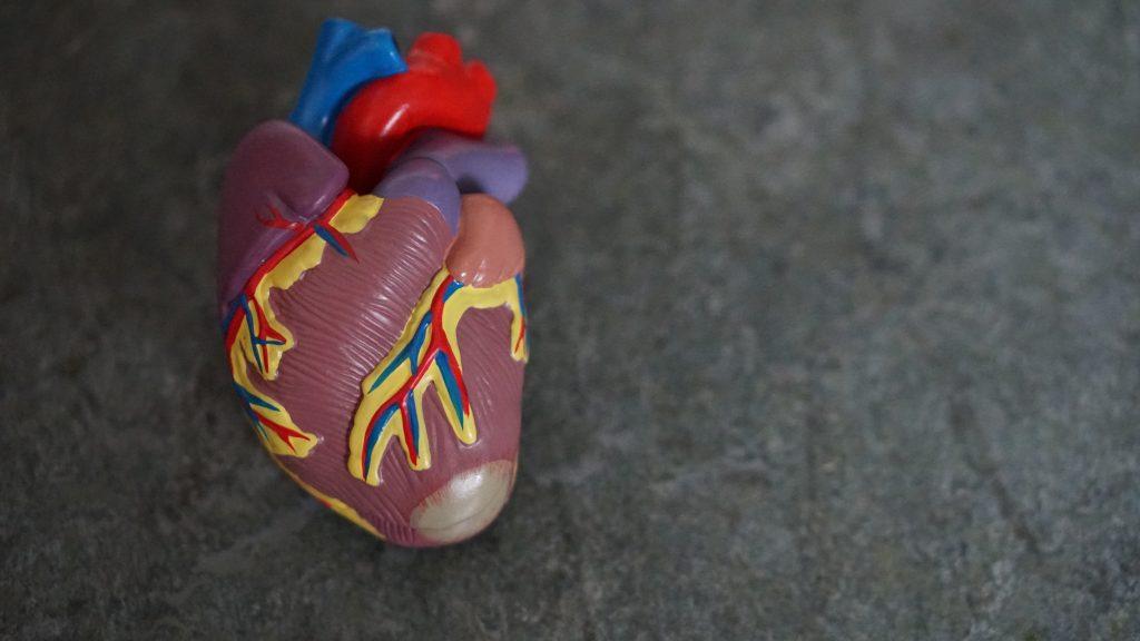 Что начать делать прямо сейчас, чтобы ваше сердце было здоровым долгие годы
