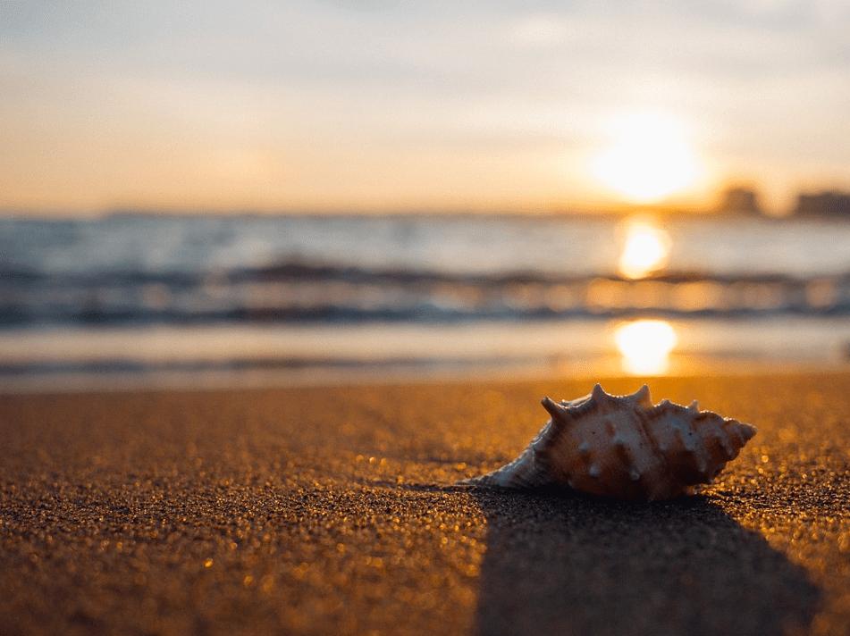 3 причины, почему во время отпуска нужно полноценно отдыхать