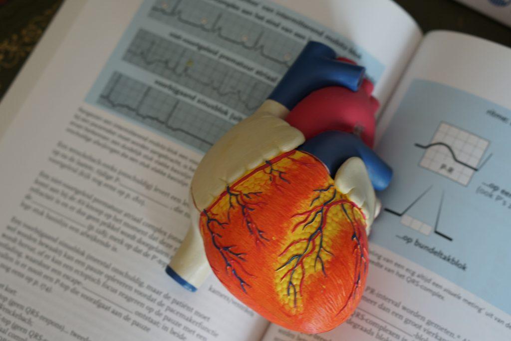Симптомы, которые могут предупредить об остановке сердца за несколько дней до неё