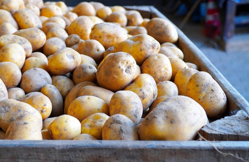 Если вы заметили следующее на картофеле, его опасно употреблять