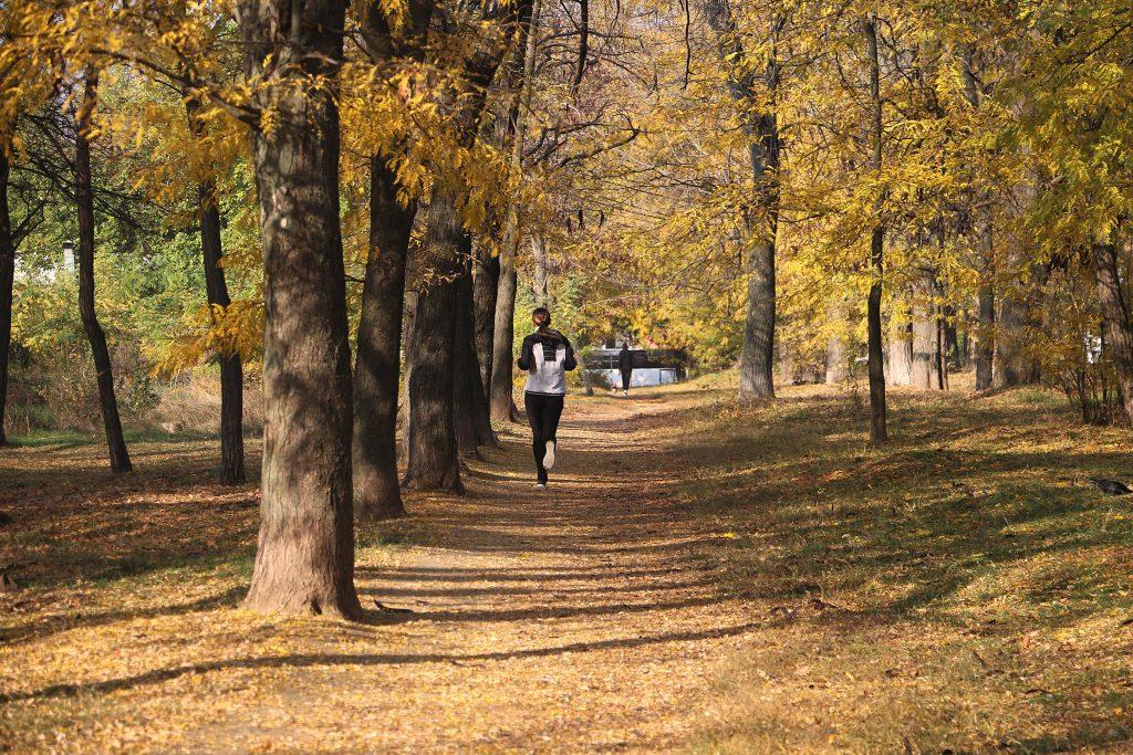 Простое изменение в тренировках осенью, которое поможет сжечь на 30% больше жира